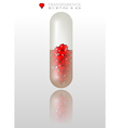 Love pill vector image