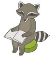 raccoon sitting on stool ottoman and reading book vector image