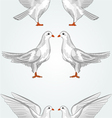 Seamless texture white dove vector image
