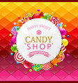 colorful background with candy banner vector image