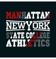New York fashion - t-shirt design vector image