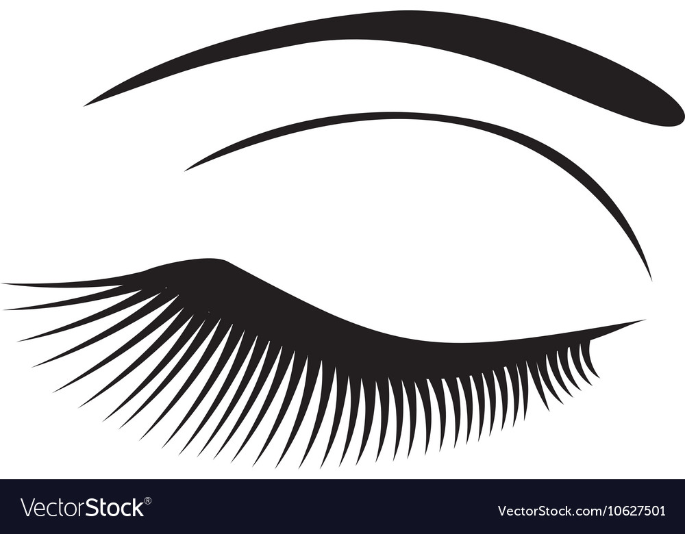Eye long lashes vector