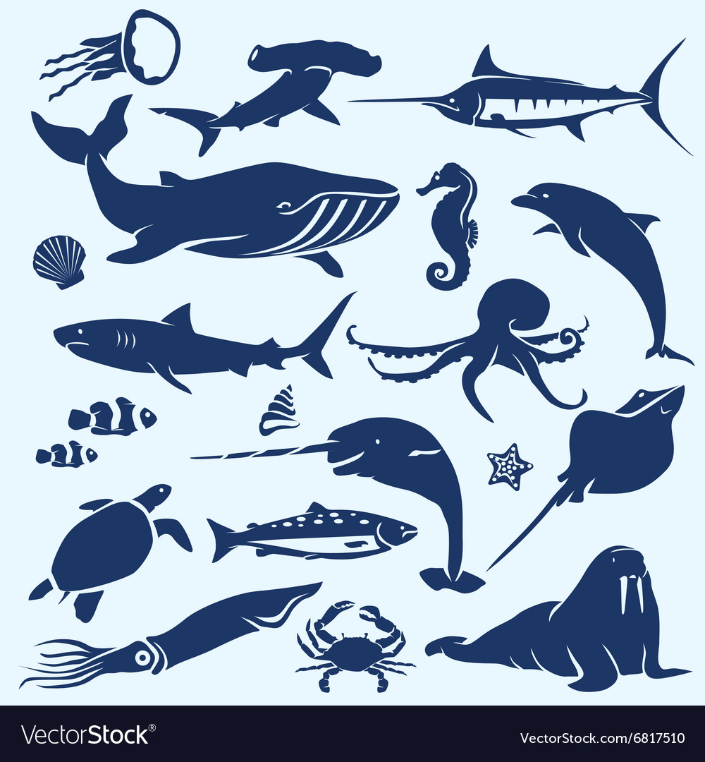 Sealife sea and ocean animals and fish vector