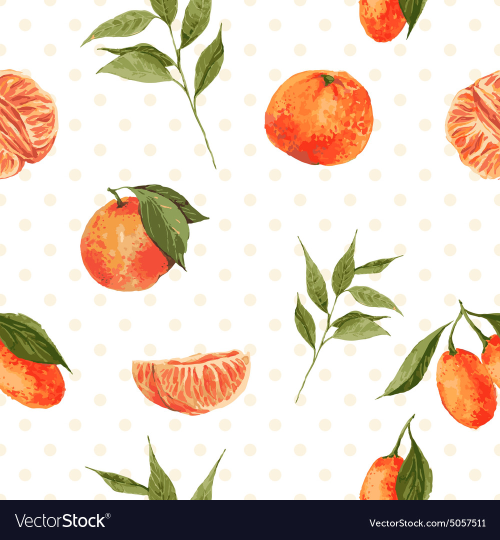 Seamless watercolor background with oranges and vector