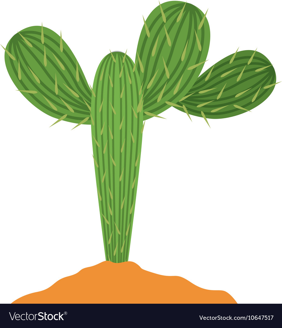 Cactus plant with earth design vector