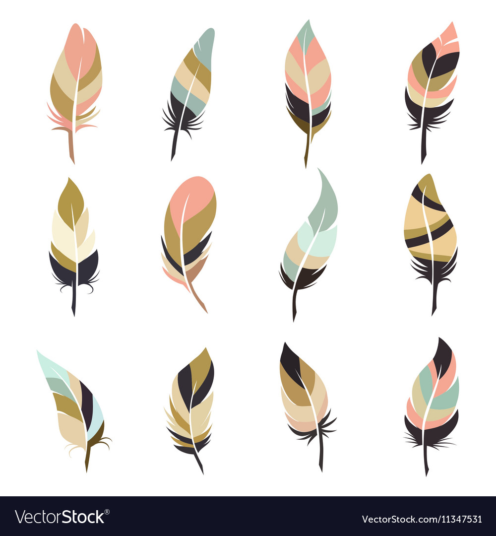Boho style feather set vector