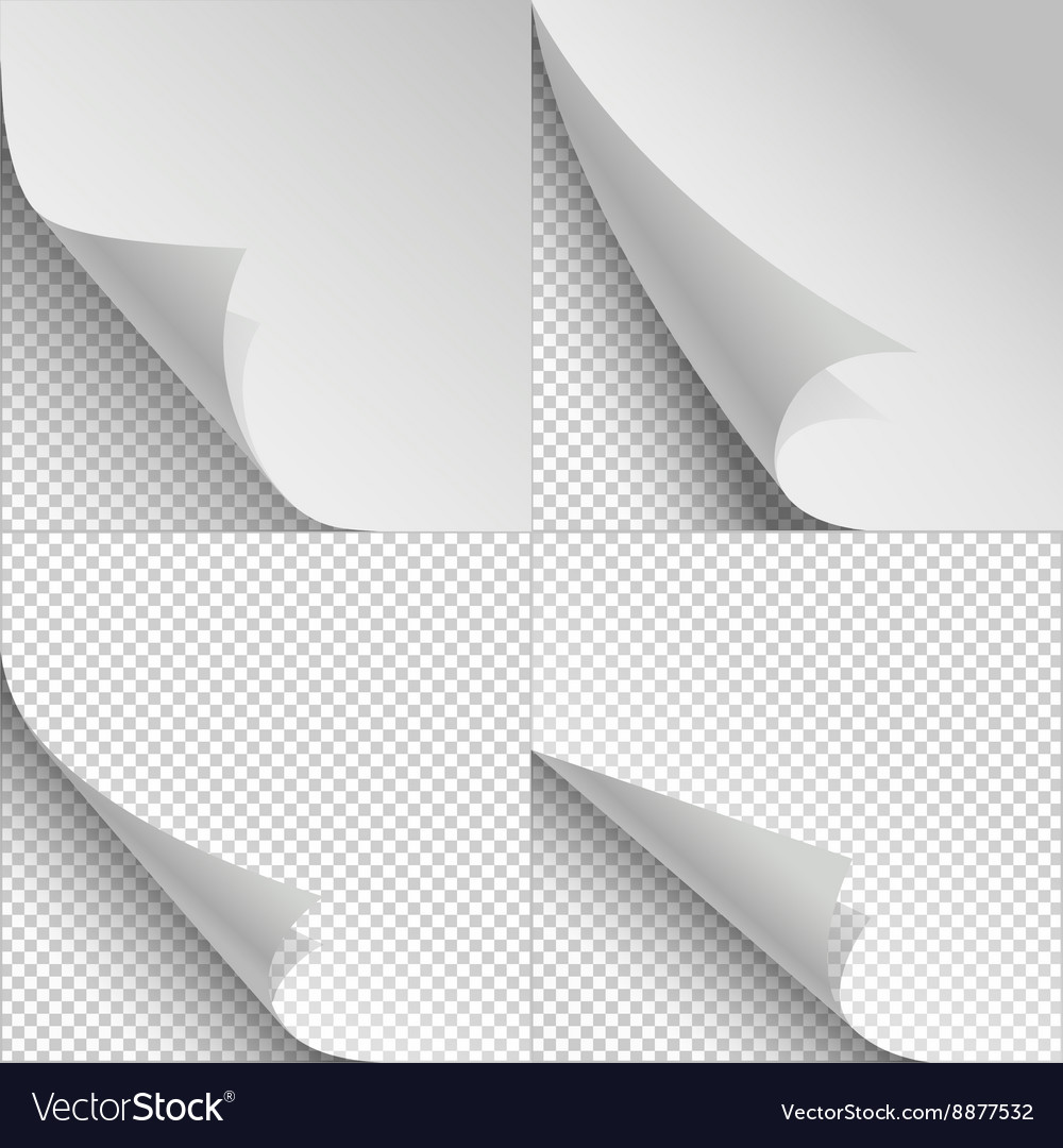 Blank sheets of paper with page curl and shadows vector