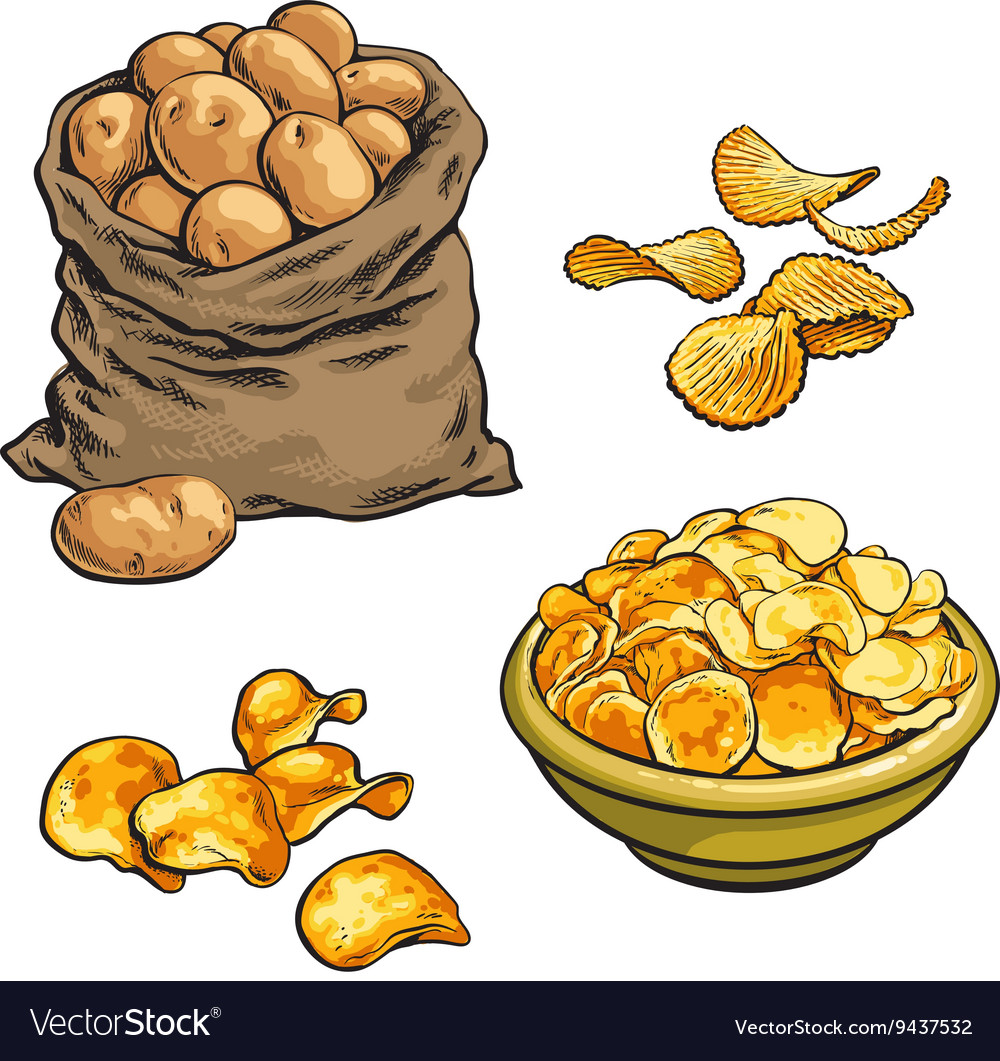 Fried potato chips and fresh vector