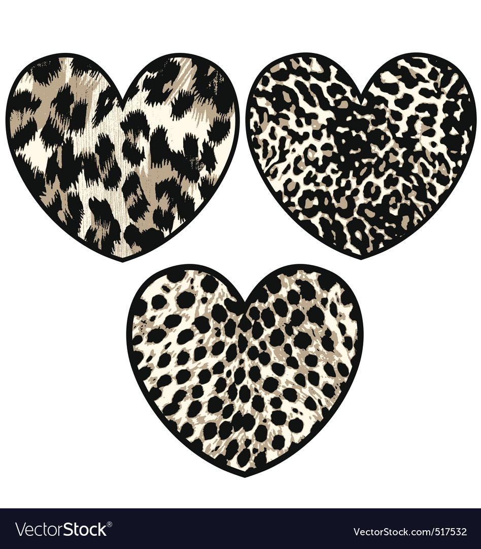 Heart with animal skin vector