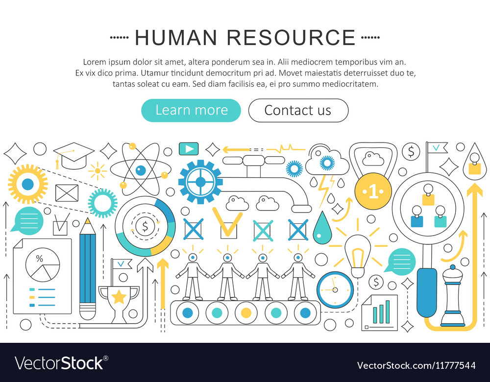 Modern line flat design human resource vector