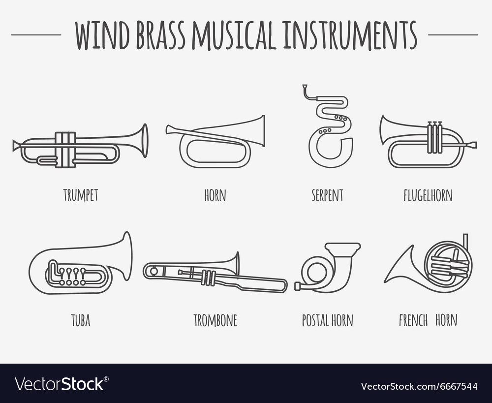 Musical instruments graphic template wind brass vector