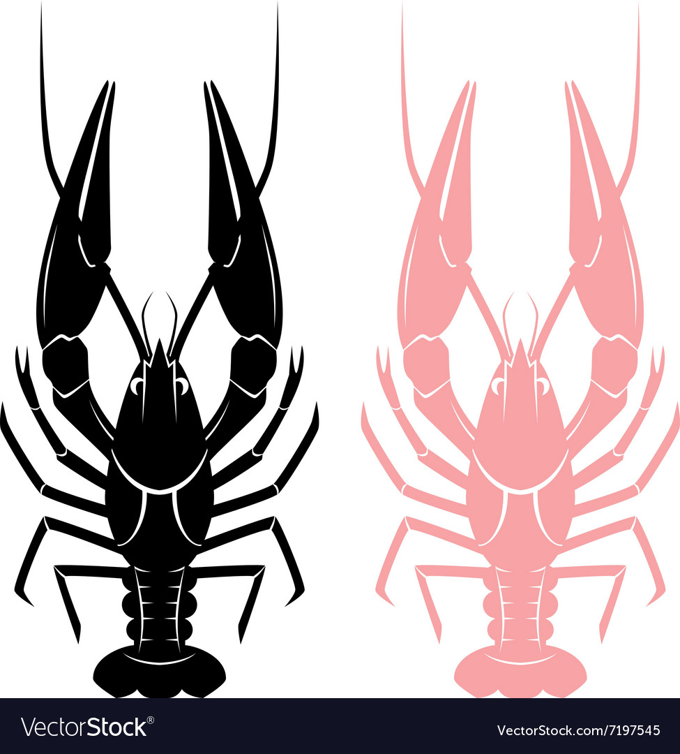 Crayfish sign vector