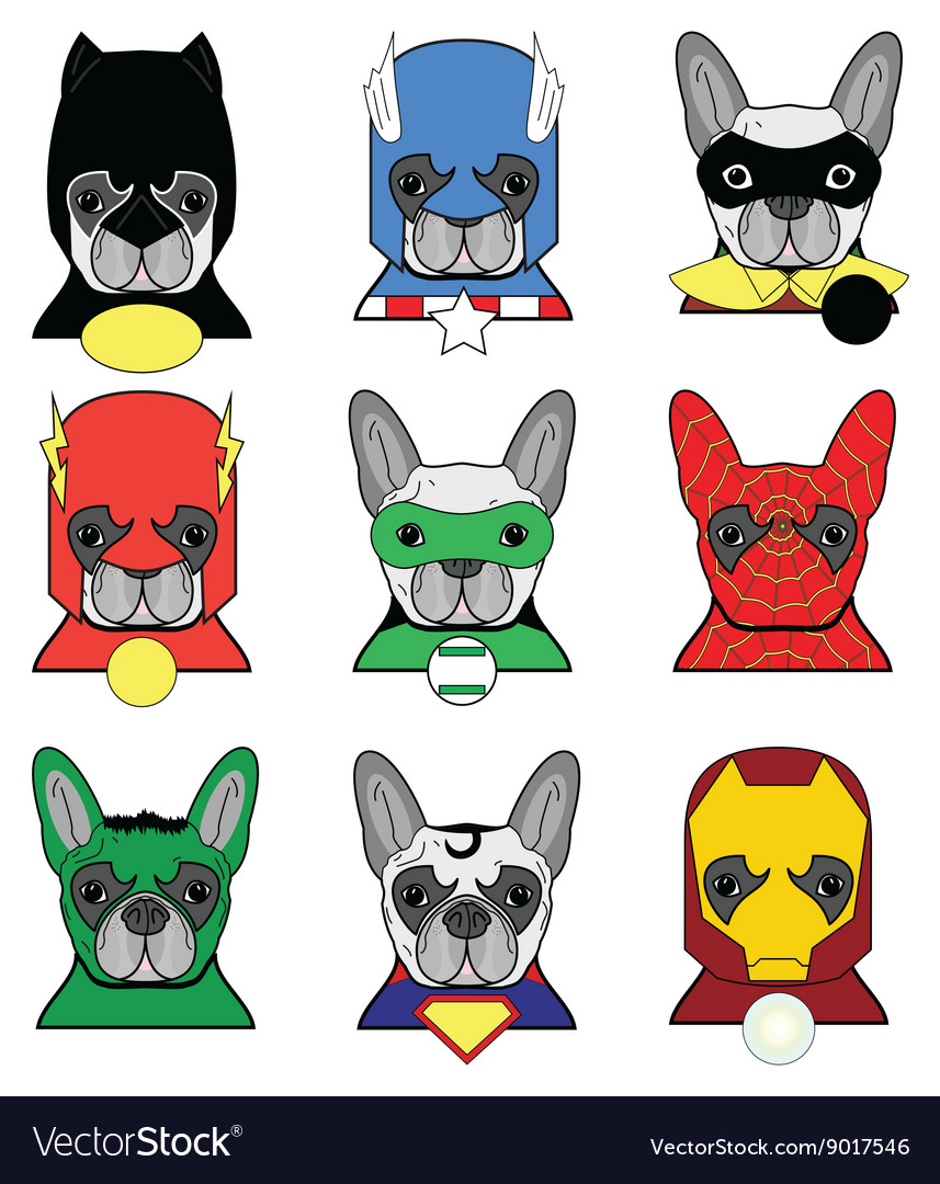 Heroes french bulldog in color vector