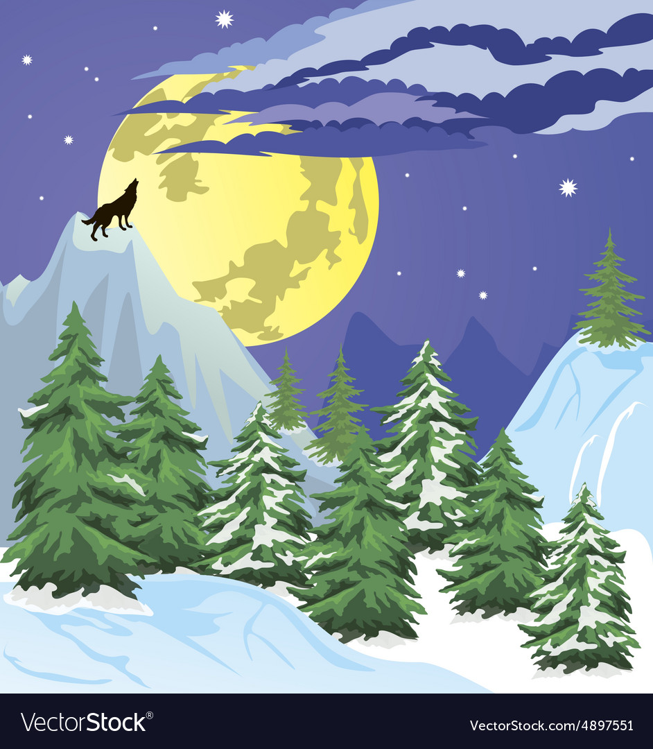Night winter forest scene vector