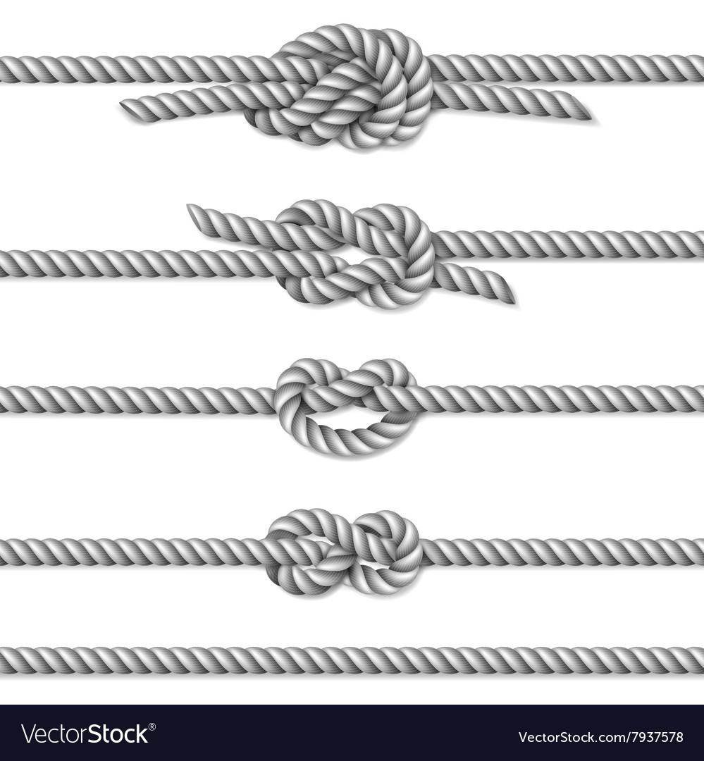 White twisted rope border set vector