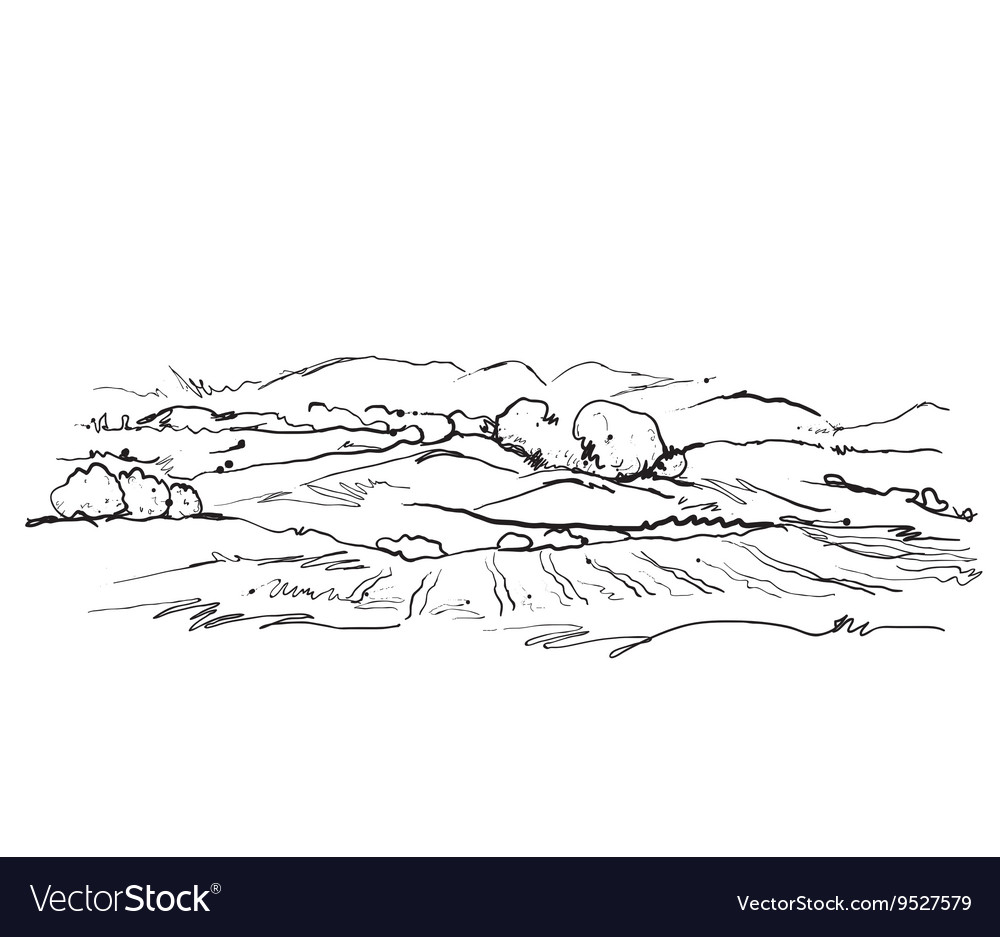 Doodles landscape with fields and trees vector