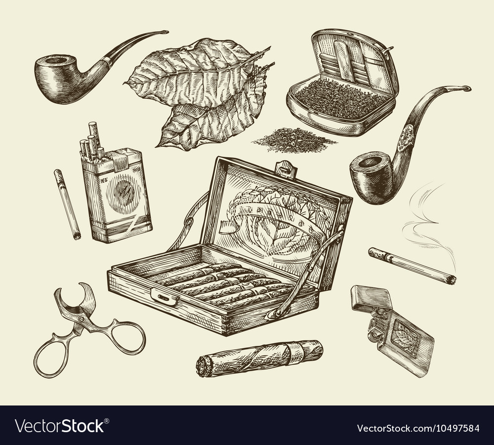 Tobacco collection smoking handdrawn vector