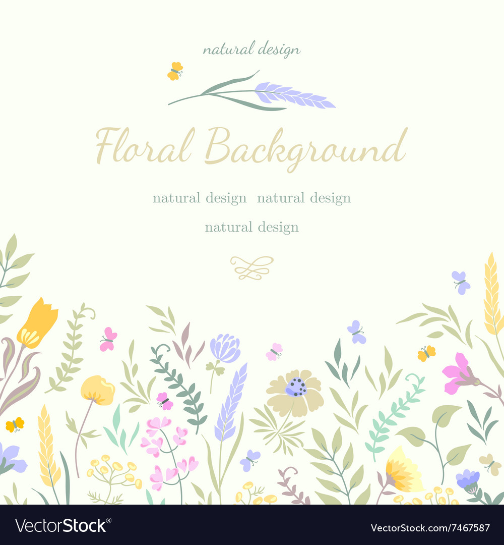 Cute summer card with colored flowers and herbs vector