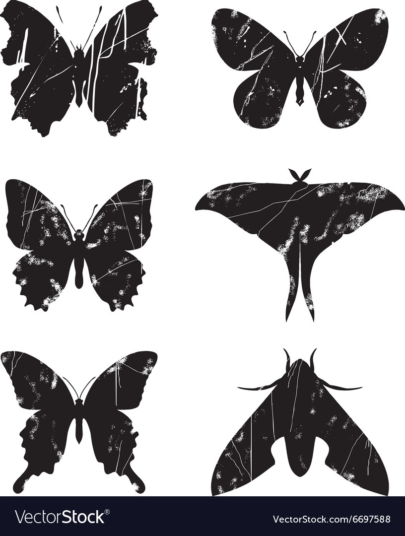 Butterfly grunge set 15 vector