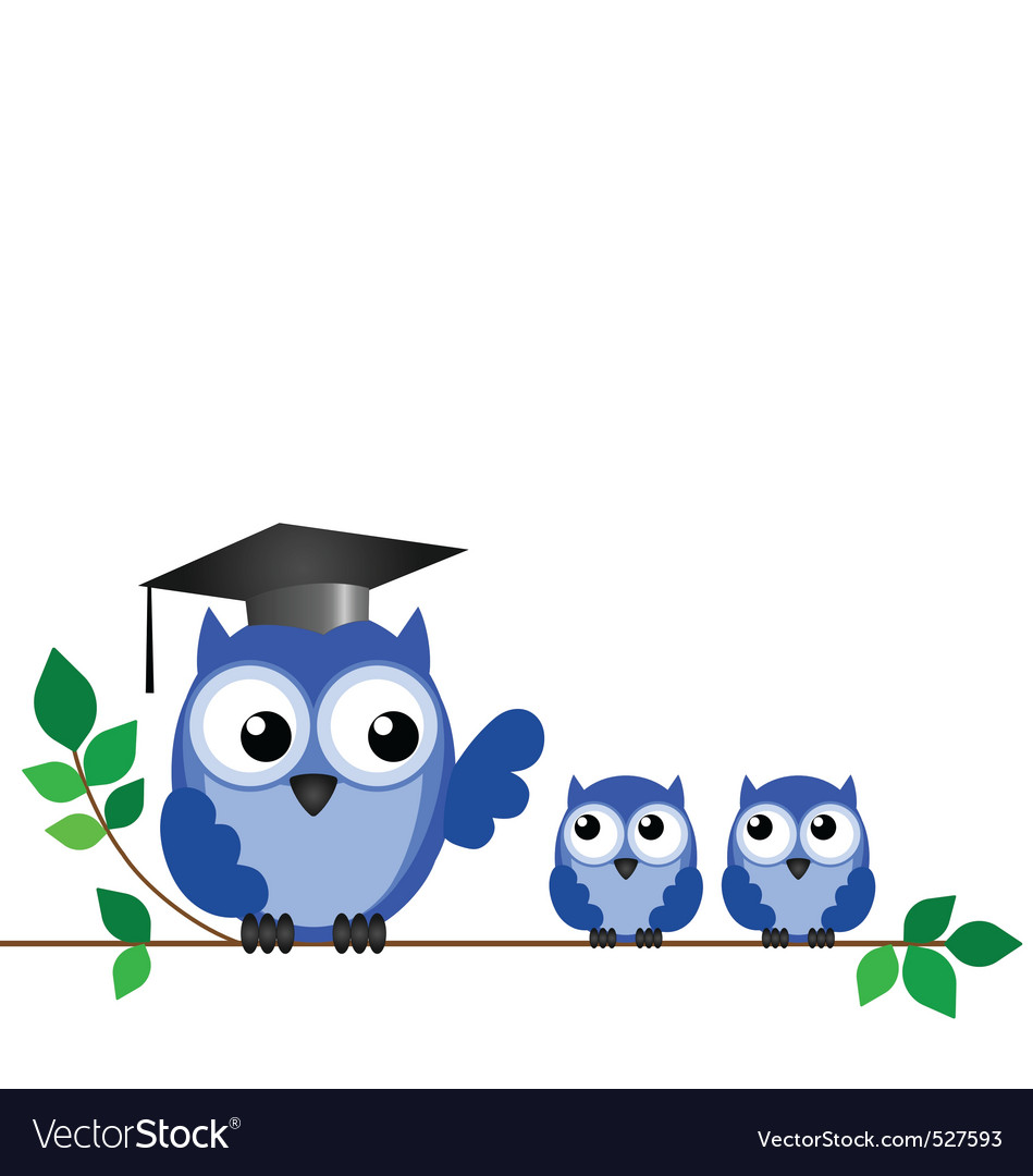Owl teacher branch vector