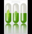 herbal remedies vector image vector image