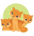 cute and funny three kittens vector image