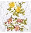 vintage of rose flower vector image
