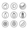 Fruit Flat design thin line icon set vector image