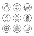 Fruit Flat design thin line icon set vector image