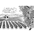 Vineyard valley landscape black and white vector image