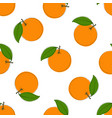 seamless pattern with hand drawn oranges on vector image