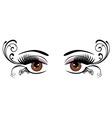 eyes floral brown vector image