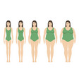 body mass index vector image