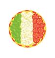 pizza as Italian flag vector image vector image