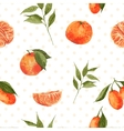 Seamless watercolor background with oranges and vector image