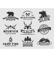 Set of outdoor wilderness adventure and mountain vector image