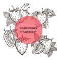 hand drawn strawberry fruits vector image