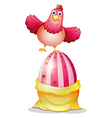 Cartoon hen on egg vector image vector image