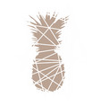 pineapple beige abstract pineapple vector image