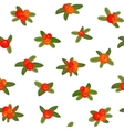 Red berries seamless pattern vector image