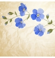 Blossoming flower brunch vector image