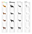 collie dachshund beagle and other web icon in vector image
