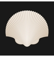 Brown Scallop Shell Isolated On Black vector image