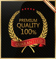 Premium quality laurel wreath vector image vector image