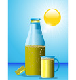 Summer drink bottle and glass vector image vector image