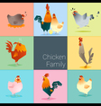 Set of chicken family vector image