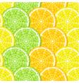 lemon slices vector image vector image