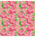pink roses 2 380 vector image