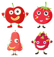 Fresh fruits in red vector image vector image