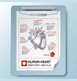 anatomical clipboard template vector image vector image